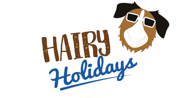 Hairy Holidays logo